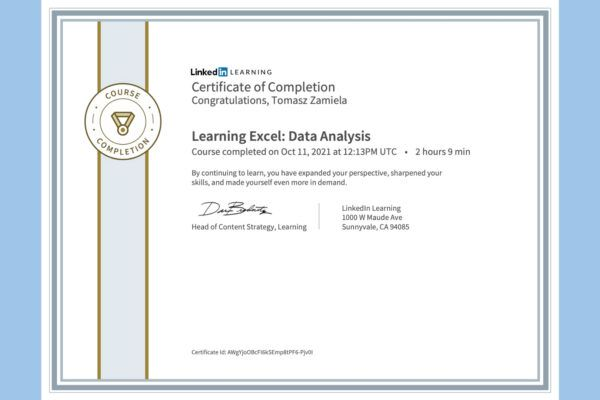 Learning Excel: Data Analysis